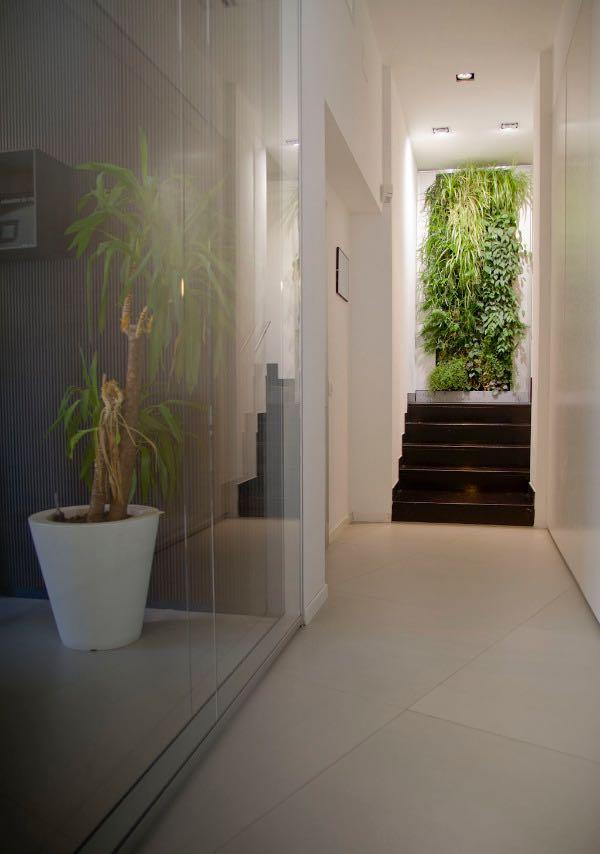 giardino-a-parete