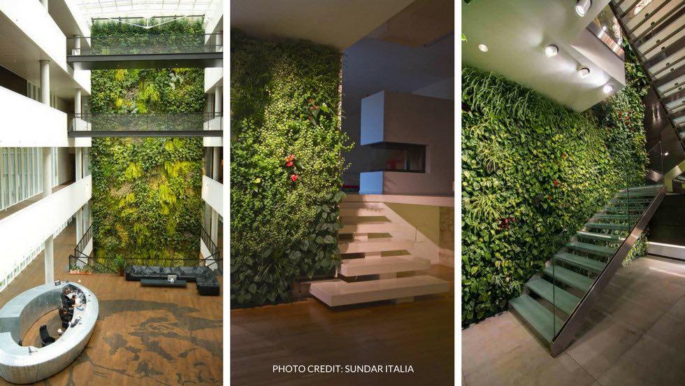7 meravigliosi benefici del giardino verticale interno - Piante per giardino verticale ...