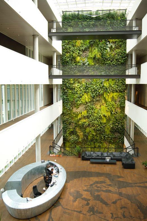 preventivo-giardino-verticale-interno