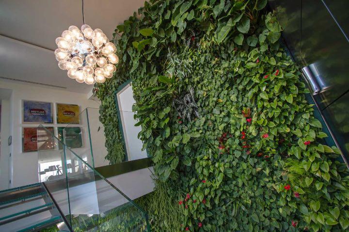 progettazione-giardino-verticale-interno