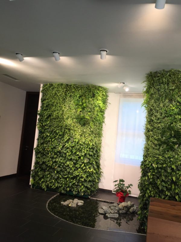 svantaggi-giardino-verticale