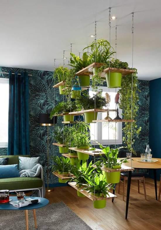 dividere-due-ambienti-con-piante