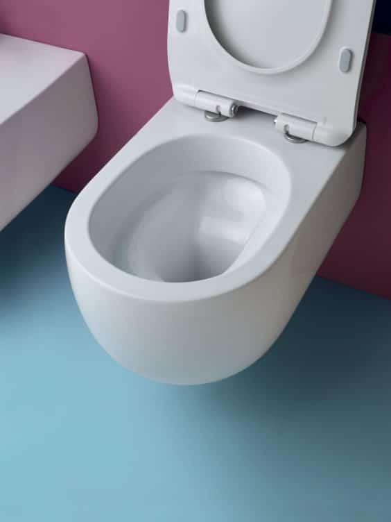 rimless wc